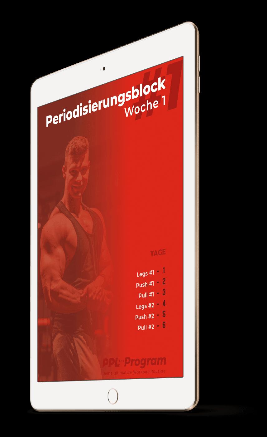 ppl_kostenlose_einblicke_periodisierung_1